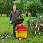 Поддерживаем газон в идеальном состоянии: необходимый инвентарь