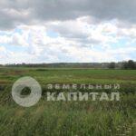 Многодетные семьи СПб получили сертификаты «земельного капитала»