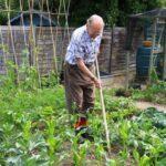 Новый закон о садоводческих товариществах — чего от него ждать?