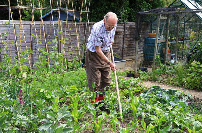 закон о садоводческих товариществах