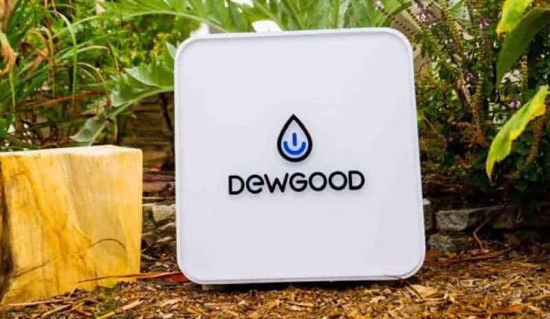 Dewgood DG-10