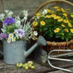 Обзор нового закона о садоводческих и огороднических хозяйствах