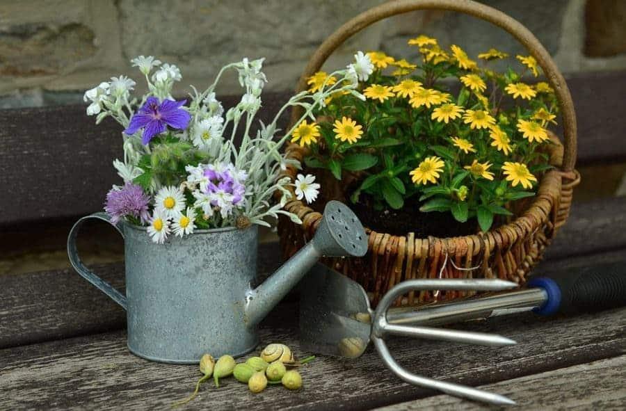 закон о садоводческих и огороднических товариществах