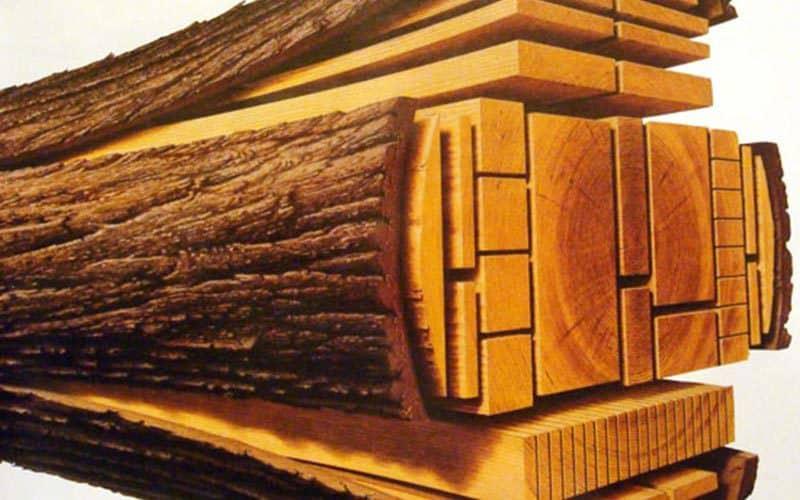 Modern lumber